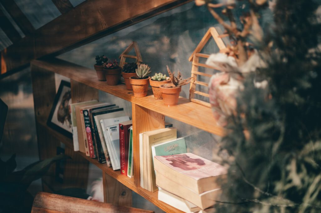 potted succulent plants on the bookshelf